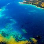 Kadavu Island Reefs